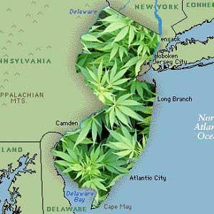 newjerseymarijuana-1